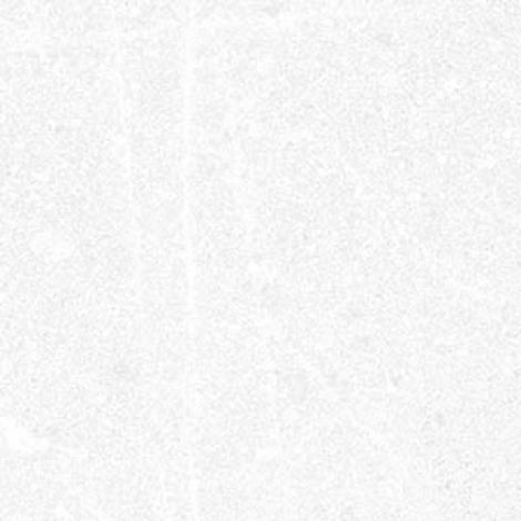 Vives Corneille-R Blanco 15 x 15 cm